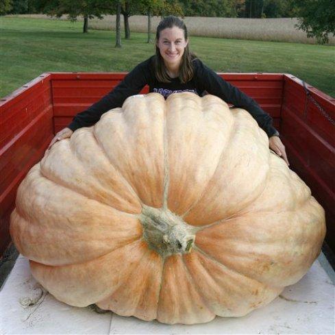Winning Pumpkin